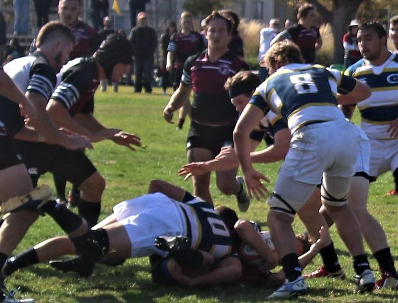 Chico-State-rugby-vs-Davis-IMG_0383.jpg