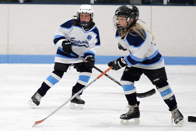 Spartan 10U Girls vs. Hermantown Gold (7-Jan-2013)