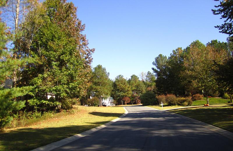 Fox Creek Cumming GA Homes (11).JPG