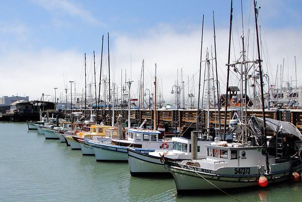 FOMFOK - San Francisco
