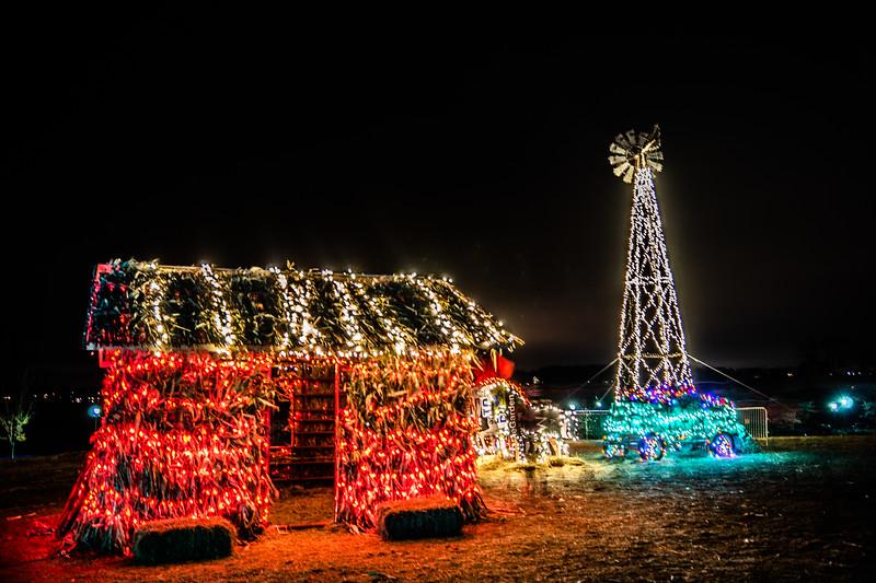NW Arboretum lights-08050.JPG