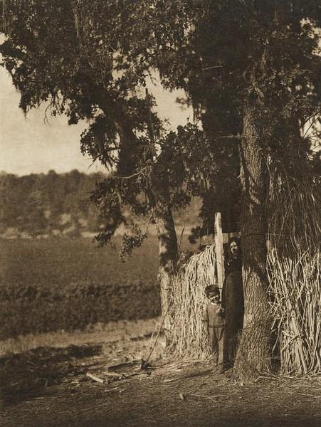 Camp under the oaks - Lake Pomo (The North American Indian, v. XIV. Norwood, MA, The Plimpton Press, 1924)
