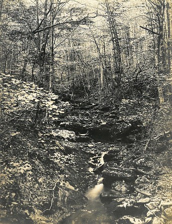 Days Gone By: Images of Pittsfield State Forest from The Eagle's Archive