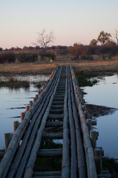 Botswana-20110717-6175.jpg