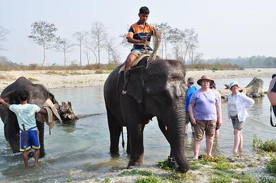 24 Elephant Park