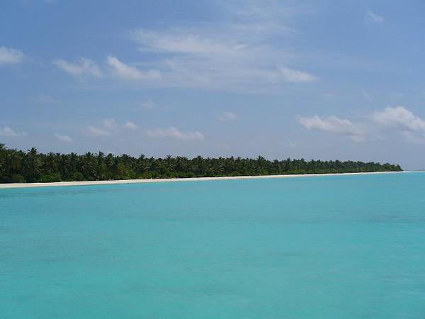 17_Sun_Island_cabins_sont_derriere_les_cocotiers.jpg