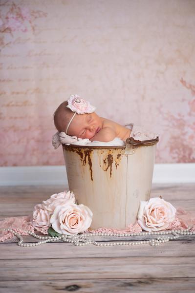 Juliette Rosa Newborn Originals