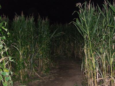 10-10 - Corn Maze - Canton, GA