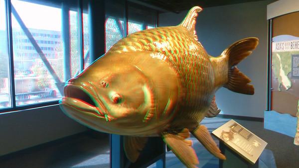 Tennesee Aquarium, Chattanooga, TN