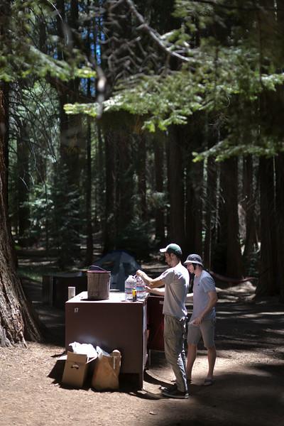 Sequoia_0153.jpg