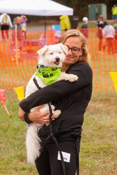 Walk For Paws & Festival 2019
