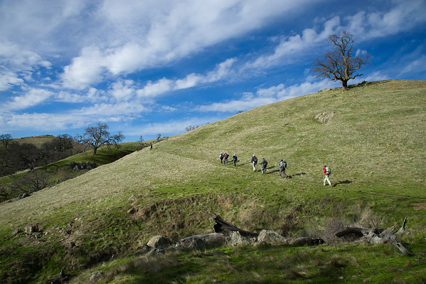 Rose Peak - Sunol walk
