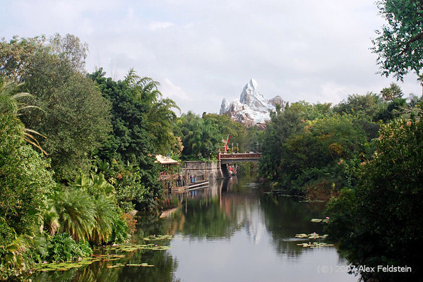 Disney's Animal Kingdom - Orlando