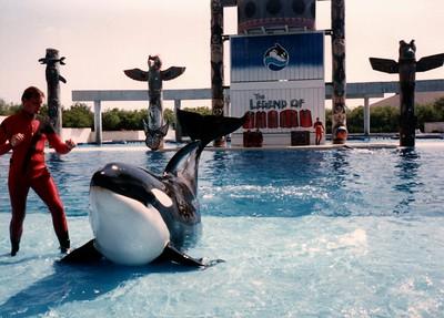 1989_May_Gatorland_Zoo_and_Sea_World