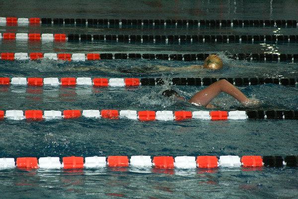 Varsity Swimming Conference Meet