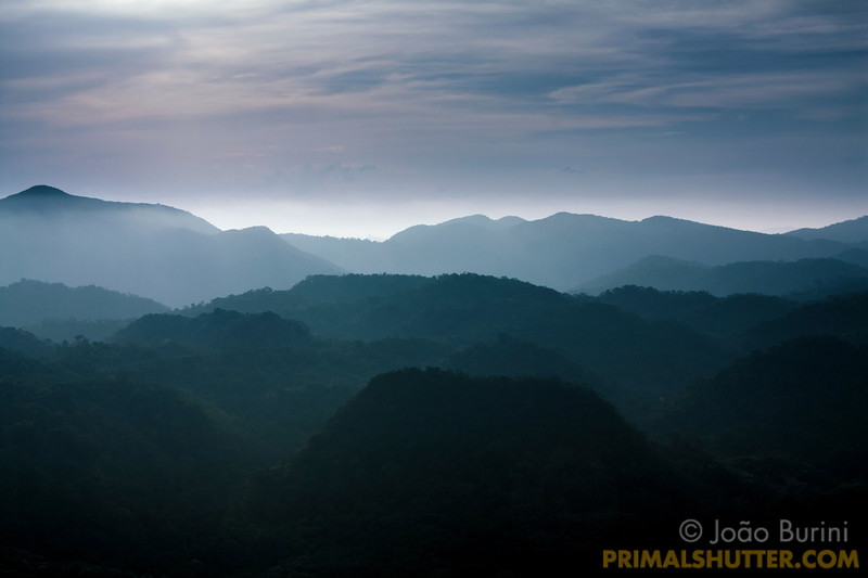 Foggy landscape with mountains in the distance, from a high lookout in Intervales State Park, Brazil. South-east atlantic forest reserve, UNESCO World Heritage Site.