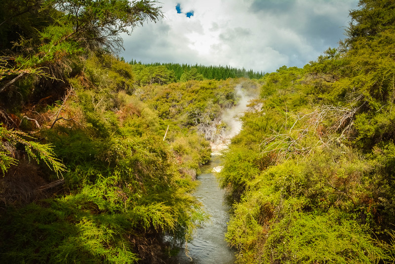 Rotorua-4.jpg