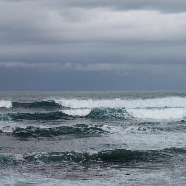 Rolling Waves in Northern California