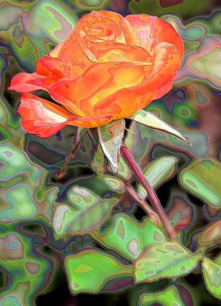 Orange Rose Enameled Amidst the Greens