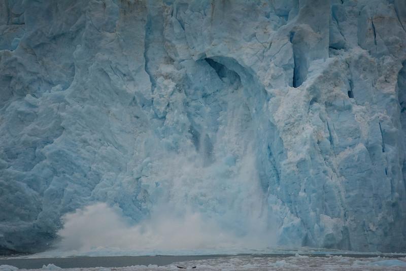 Kenai-Fjords-116.jpg