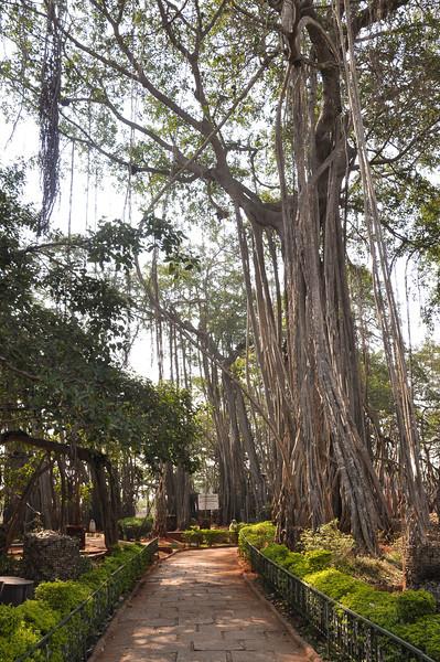 2014-03 On Road to Mysore 018.jpg