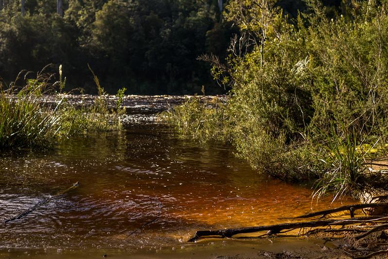 Tasmania-62.jpg