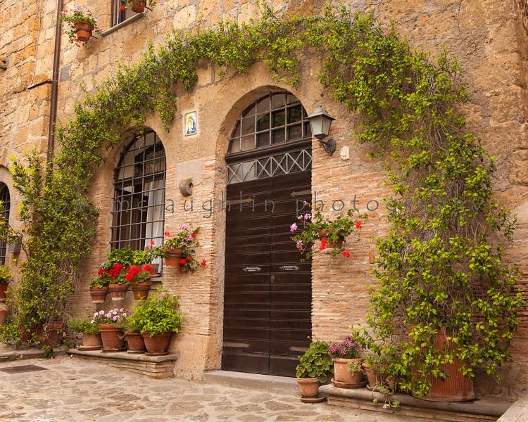 Vined Archway , Civita di Bagnoregio , Tuscany