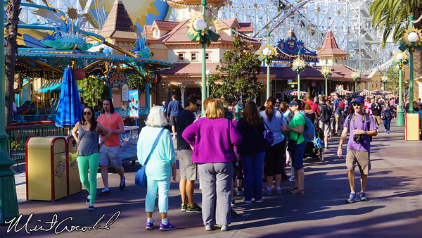 Disneyland Resort 2/21/14