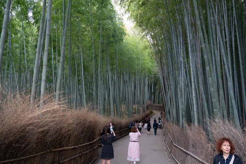 20190411-JapanTour-5098.jpg