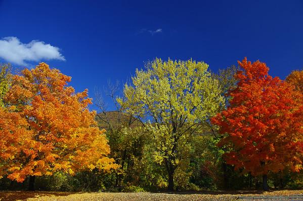 Poconos, Catskills and More,  Fall Color Tour, October 2016