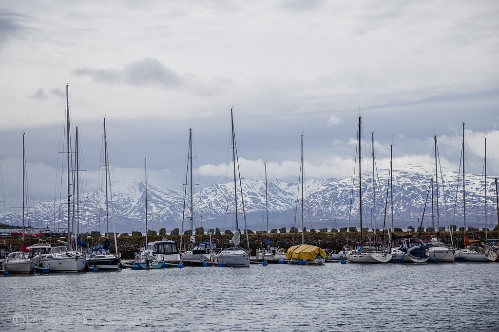 Norway Pictures - Tromsø - Lina Stock