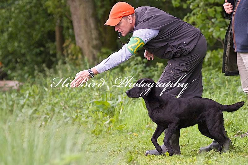 Int & B Ftch Go Back Fyne Roy Ehbel 3946.jpg