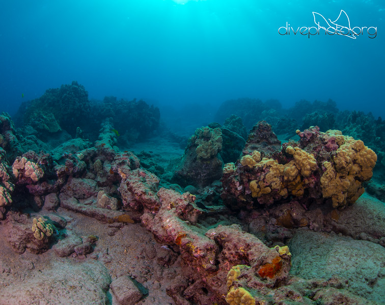 Twin Anchor Chains on Seafloor in Mahukona, Hawaii