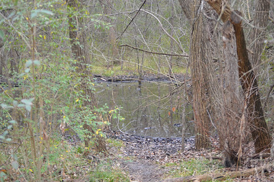 2014-02-09 - River Legacy Walk