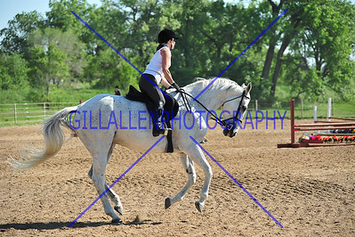 Shows (Stables/Ranches)