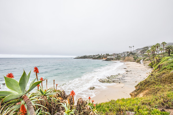Laguna Beach (2017-01-11)