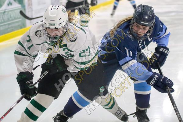 Canton-Franklin Girls Hockey - 01-02-19