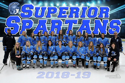 SHS Girls Varsity Hockey 2018-19