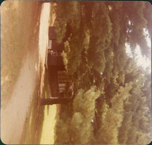 1977 Stay Scanned by Steve_00016A.jpg