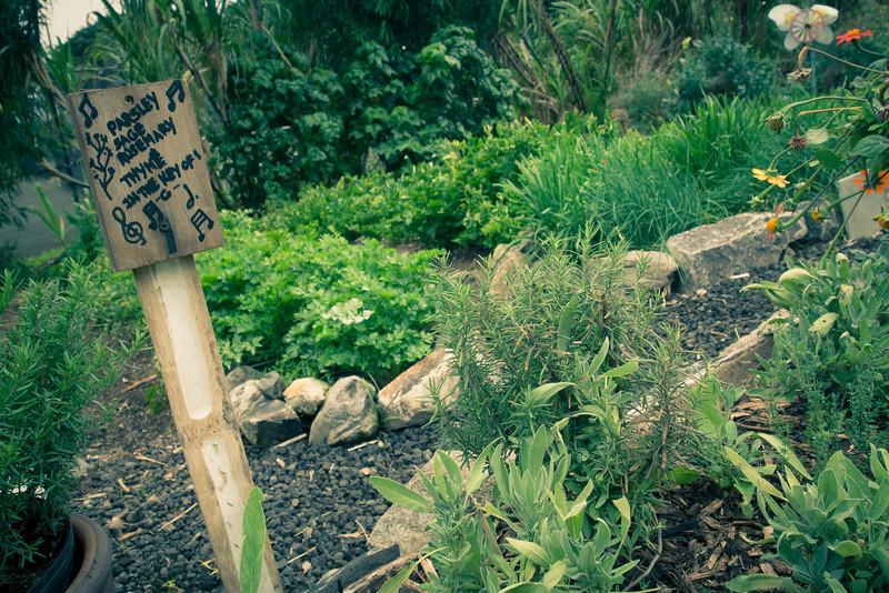 ritz carleton garden herbs.jpg