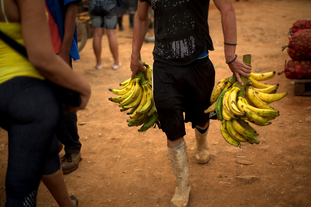 . In this Sept. 30, 2013 photo, a farmer sells bananas at the 114th Street Market on the outskirts of Havana, Cuba. The market\'s bustle is a result of economic reforms begun in 2010 by President Raul Castro, which includes relaxing rules on private farming.  (AP Photo/Ramon Espinosa)