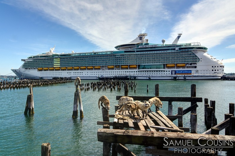 The Liberty of the Seas docked in Portland
