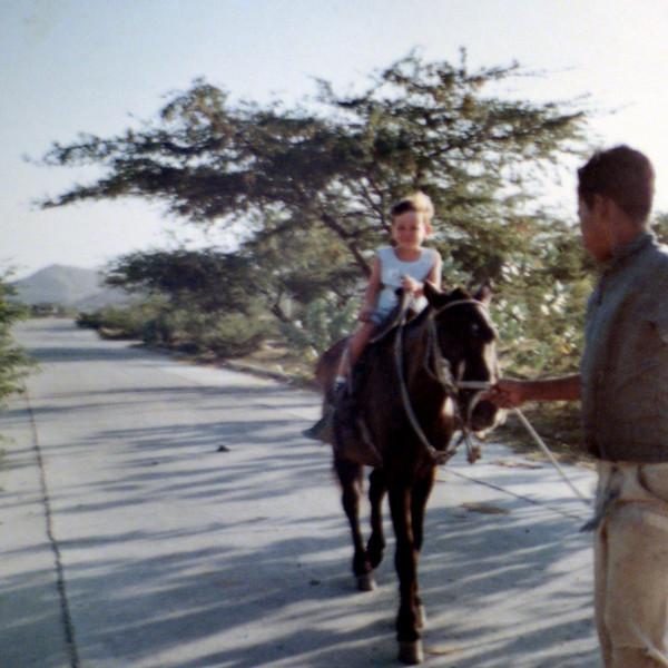zevy on horse.jpg