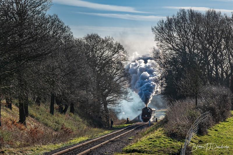 Bluebell_Railway (1 of 161).jpg