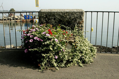 Nyon - Switzerland