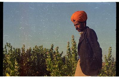 Rajasthan 1996