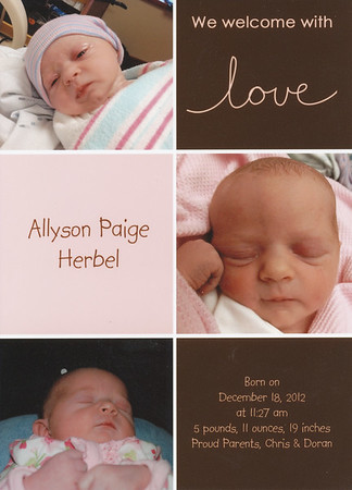 2012-12 Allyson Herbel Birth