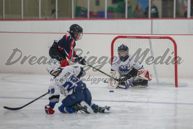 Blizzard Hockey 111719 6995.jpg