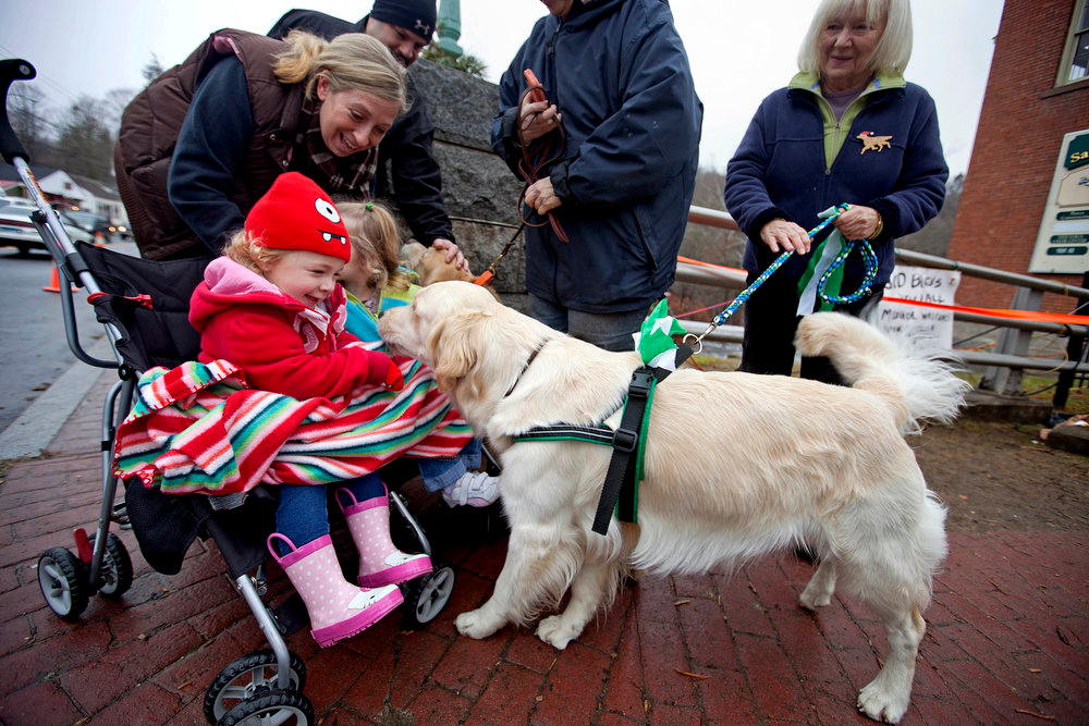 Description of . Addison Strychalsky, 2, and her mother, Jennifer, left, of Newtown Conn., play pets Tilley, a golden retriever therapy dog, during a visit from the dogs and handler Mary Minard, right, to a memorial for the Sandy Hook Elementary School shooting victims, Tuesday, Dec. 18, 2012, in Newtown, Conn. (AP Photo/David Goldman)