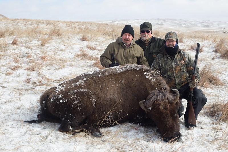 Buffalo Hunt (22).JPG